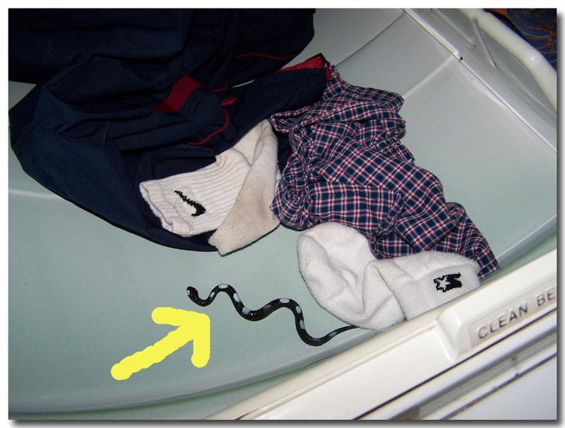 Dryer_2